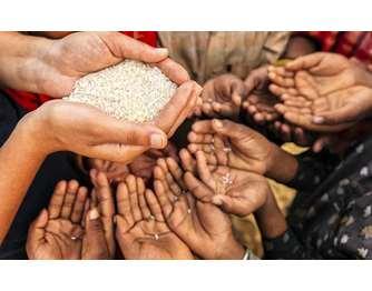 Kαπιταλισμός και τροφή: πείνα εν μέσω αφθονίας